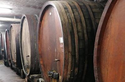 wijnkelder Alphonse Kuentz